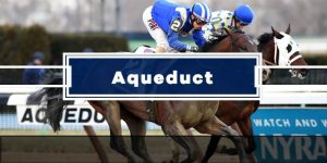 Today's Aqueduct Picks