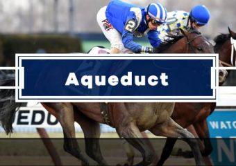 Today's Aqueduct Picks