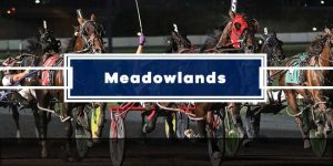 Today's Meadowlands Picks