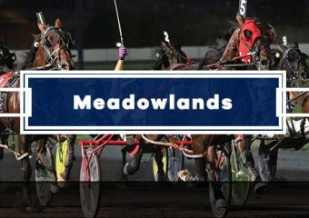 Pilihan Meadowlands hari ini