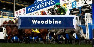 Today's Woodbine Picks