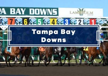 Today's Tampa Bay Downs Picks