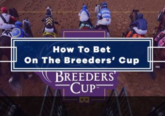 How To Bet On The Breeders' Cup 2020